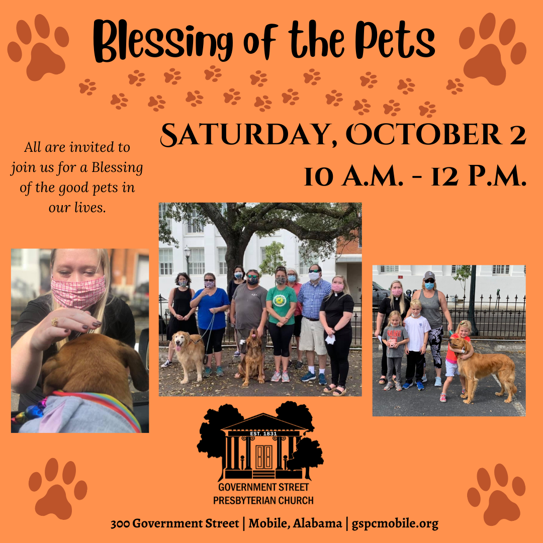 Blessing of the Pets 2021